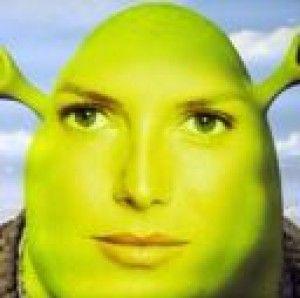 Bamsarakilledyou S Profile Picture Funny Profile Pictures Funny Profile Shrek Memes