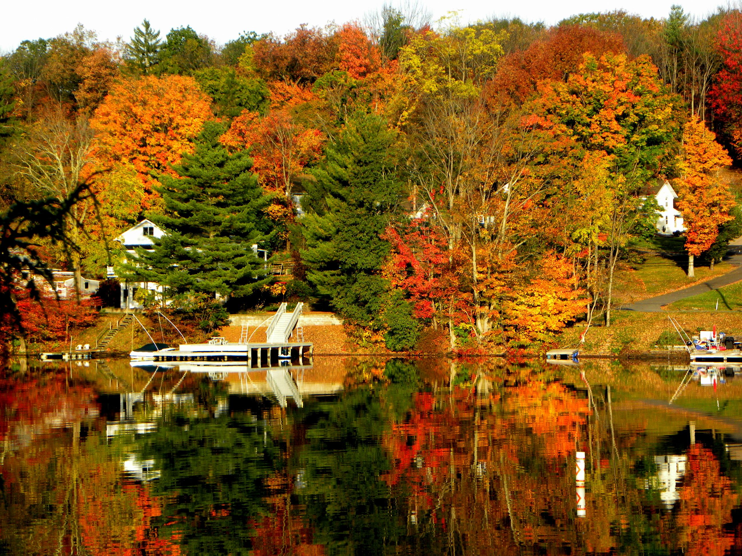 Harveys lake style decor