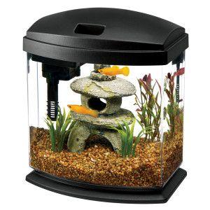 Aqueon Minibow Aquarium Desktop Aquariums Petsmart Aquarium Kit Aquarium Desktop Aquarium