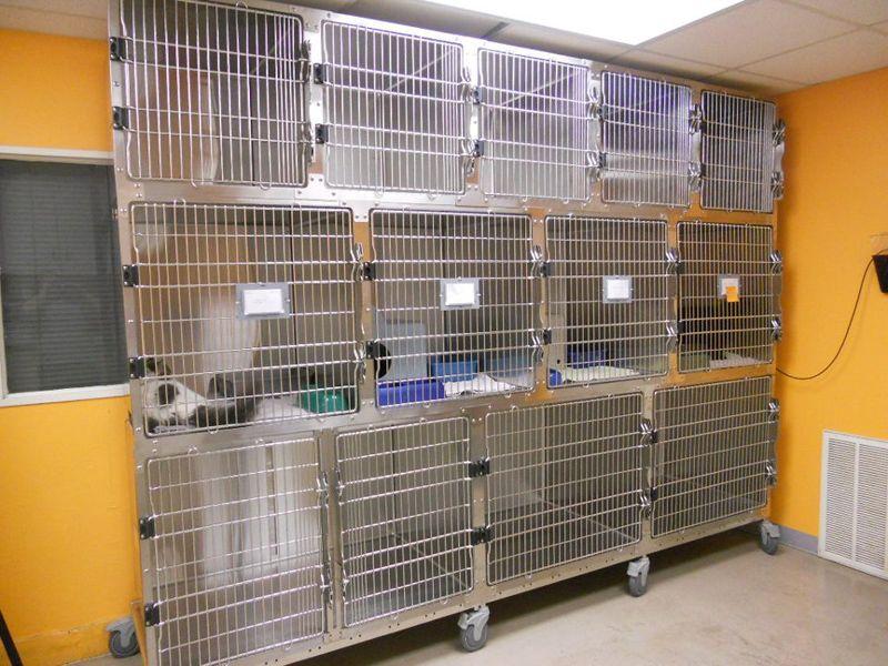 Cages Vet Medicine Steel Cage Pet Hotel