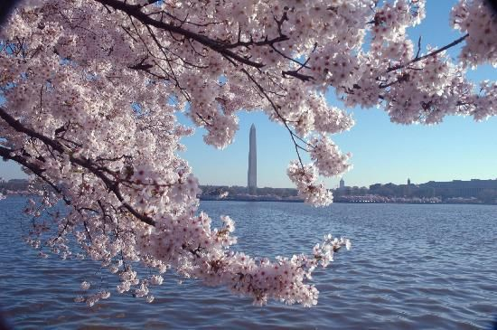 Pin By Clarissa Hernandez On Places I Ve Been Washington Dc Vacation Dc Vacation Best Tourist Destinations