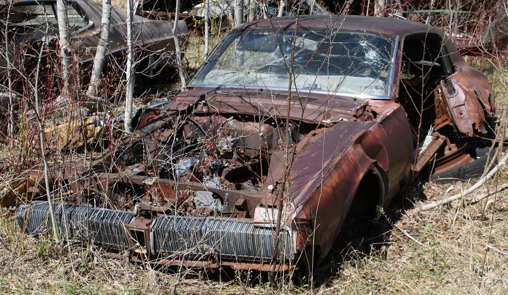 1967 Cougar Lost Then Found Pinterest Barn Finds Rusty Cars