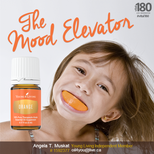 Young Living Orange essential oil is cold pressed from the fresh fruit peel of oranges grown in the United States, orange's sweet, citrus fragrance induces relaxation and encourages positive emotions.  You can add orange essential oil to your water, your smoothies or salads, it will pep up the taste, enhances your mood, has calming effects and may help you to feel more peaceful.  http://www.ylwebsite.com/oil4you/contact