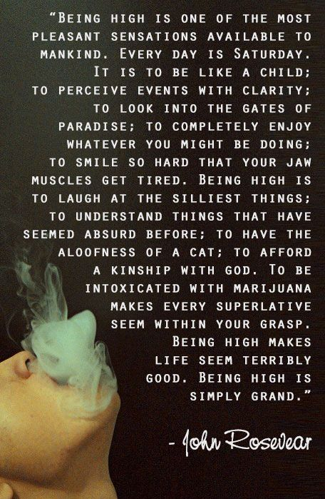 Pin by Haley Murphy on Mary Jane! | Stoner quotes, High ...