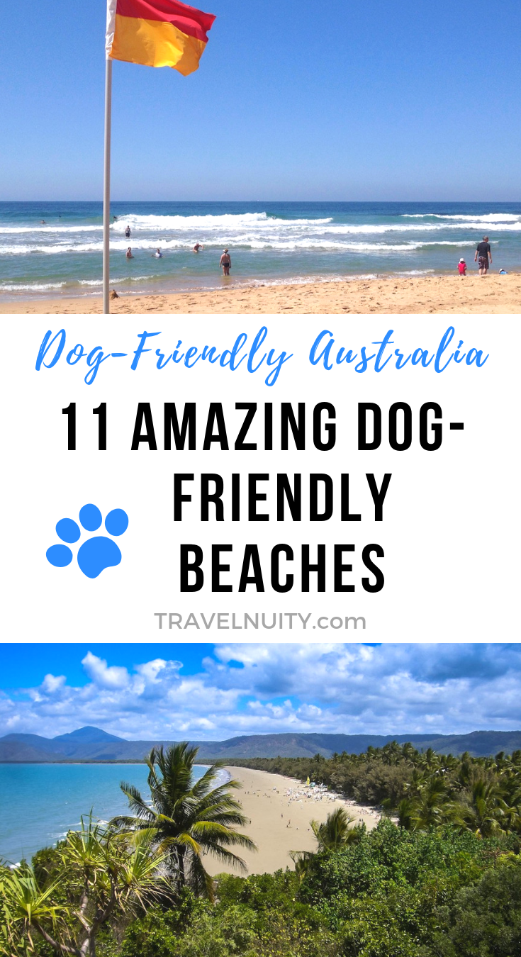 11 Amazing Dog Friendly Beaches In Australia Dog Friendly Beach Philippines Travel