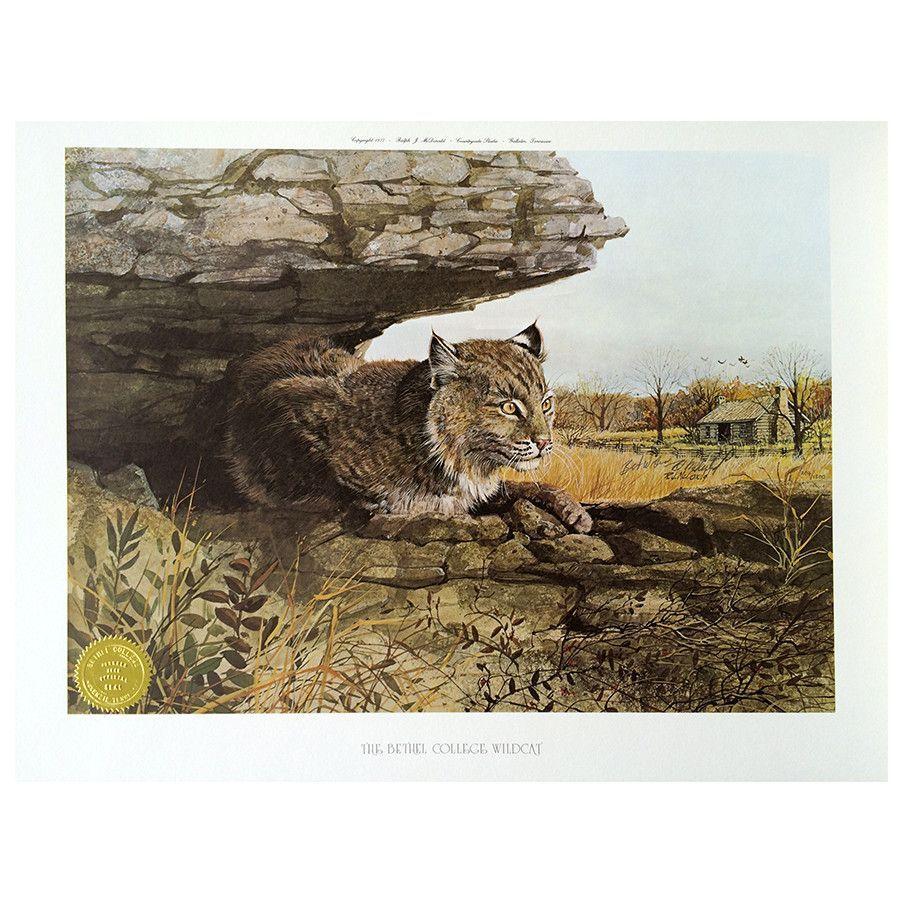 Print Bobcat, Bethel College Wildcat by Ralph J