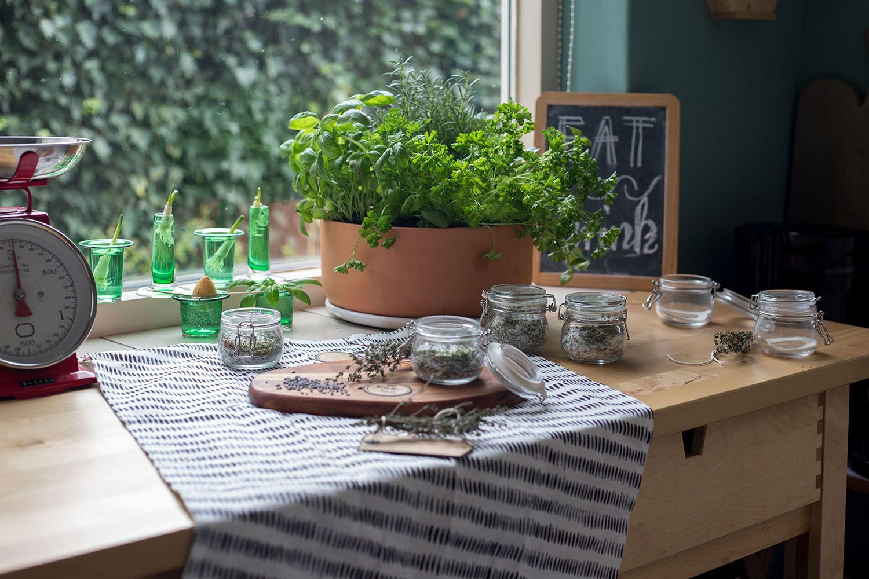 tipps für die kräuterküche | kräuter pflanzen, küchenkräuter und, Hause und garten