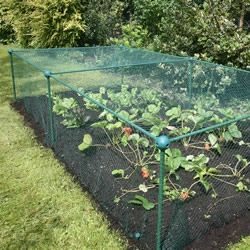 17 Best 1000 images about Fruit and Vegetable Cages on Pinterest