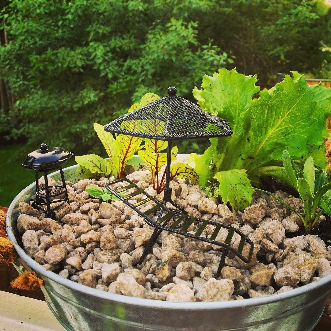 Nyt aurinkotuoliin loikoilemaan salaatinlehden  ja viinisuolaheinän  alle. Basilikan voi napsaista suoraan suuhun. Rakensin #miniature #pienoispuutarha ystävälle jolla ei ole puutarhaa. Rakennusaineet Järvenpään Kukkatalosta @jkukkatalo #yrtit #ruukkupuutarha #kotipuutarha