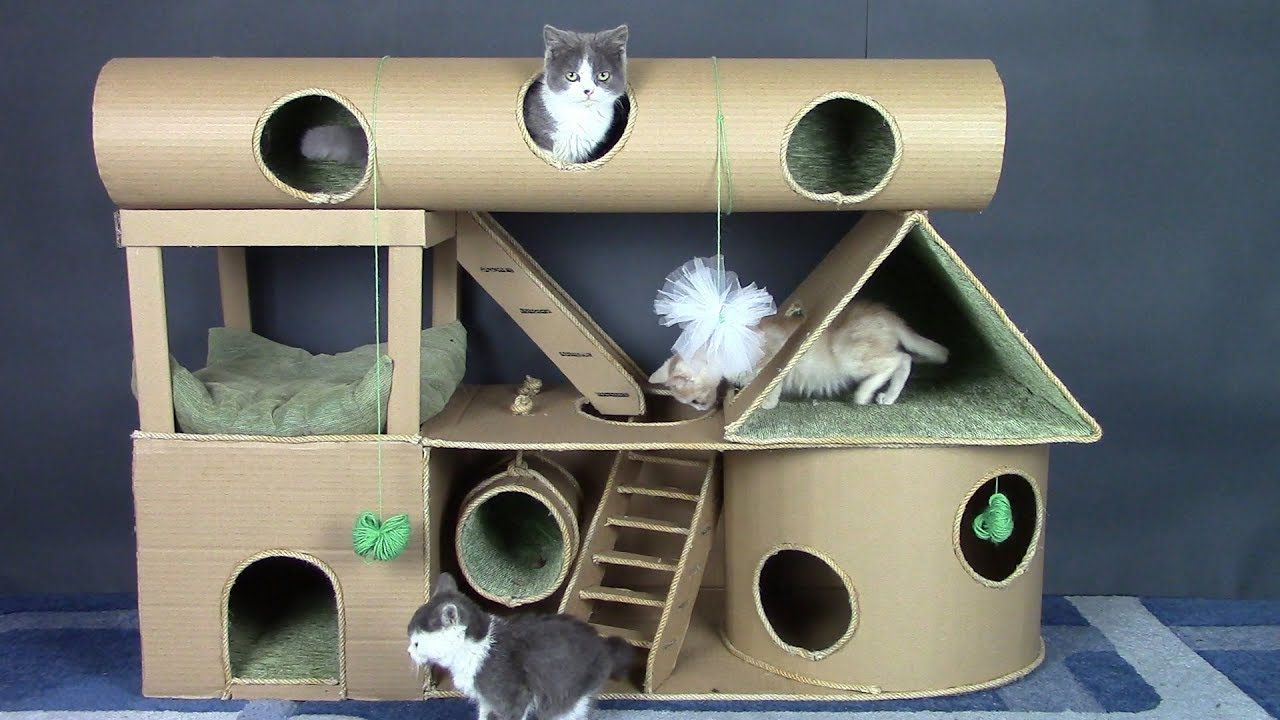 How To Make Amazing Kitten Cat Pet House From Cardboard Youtube Cardboard Cat House Cat House Diy Cat House Diy Cardboard