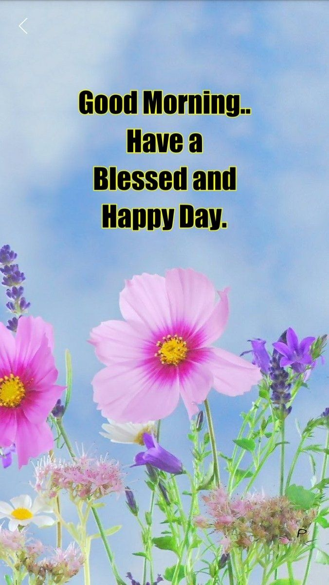 Good morning inspirational quotes pinterest morning greetings good morning m4hsunfo