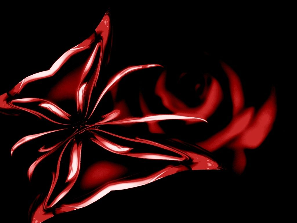 Black And Red Roses Xp Wallpaper Red Butterfly Image On Black Background With Red Rose Black And Red Roses Red Butterfly Butterfly Images