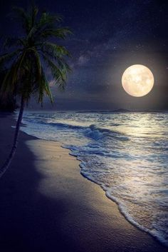 Beautiful Fantasy Tropical Beach with Milky Way Star in Night Skies, Full Moon - Retro Style Artwor