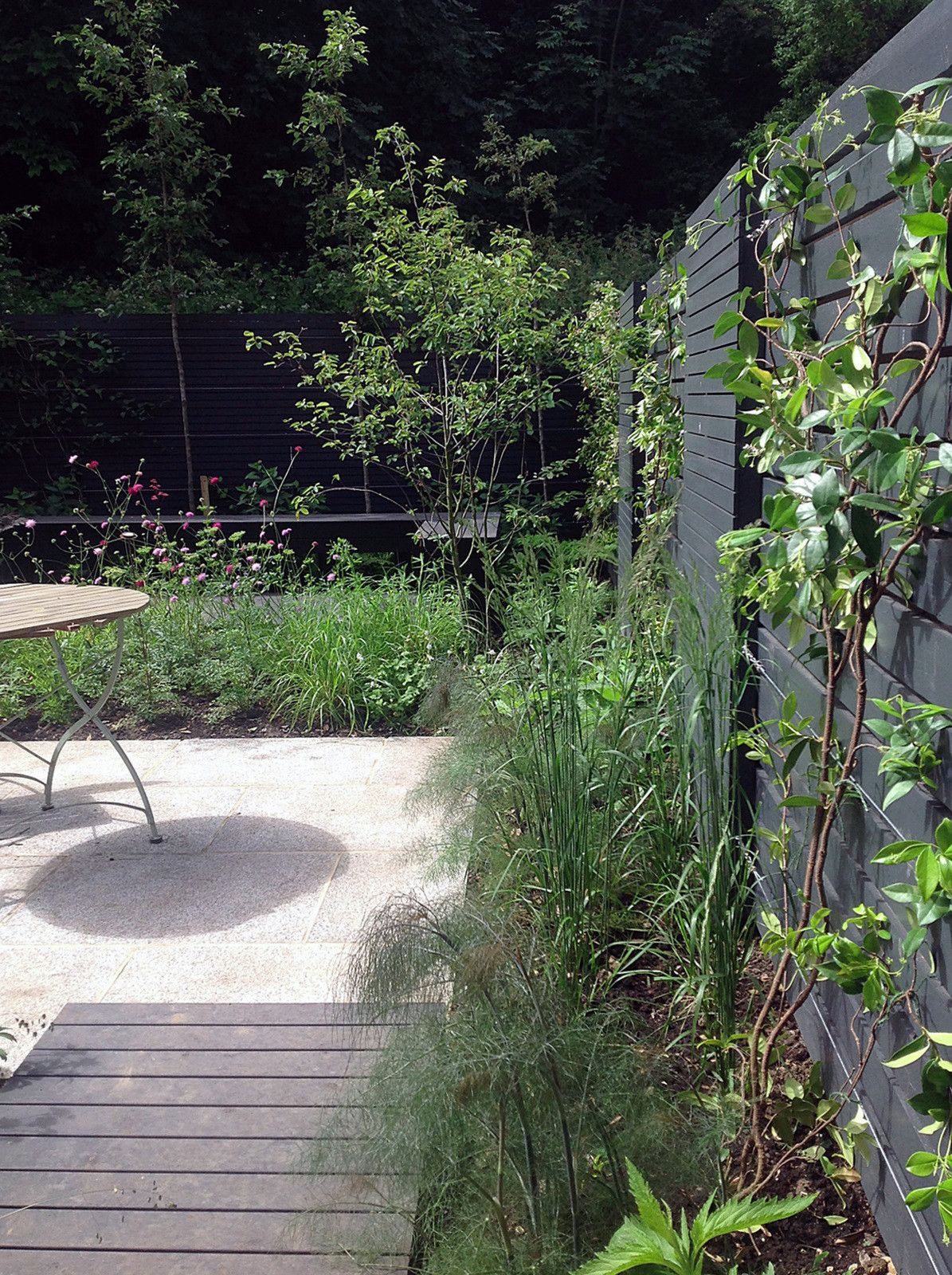 London small garden design peckham dulwich clapham battersea designer london