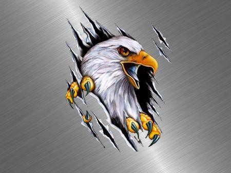 Eagle Desktop Nexus Wallpapers Bald Eagle Art Eagle Artwork Eagle Art Cool eagle wallpaper 3d