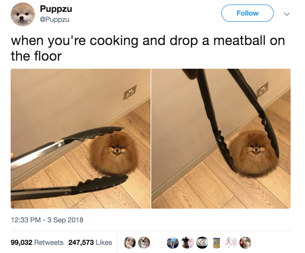 17 Tweets From This Week That Fuck Me Up Every Time I Read Them