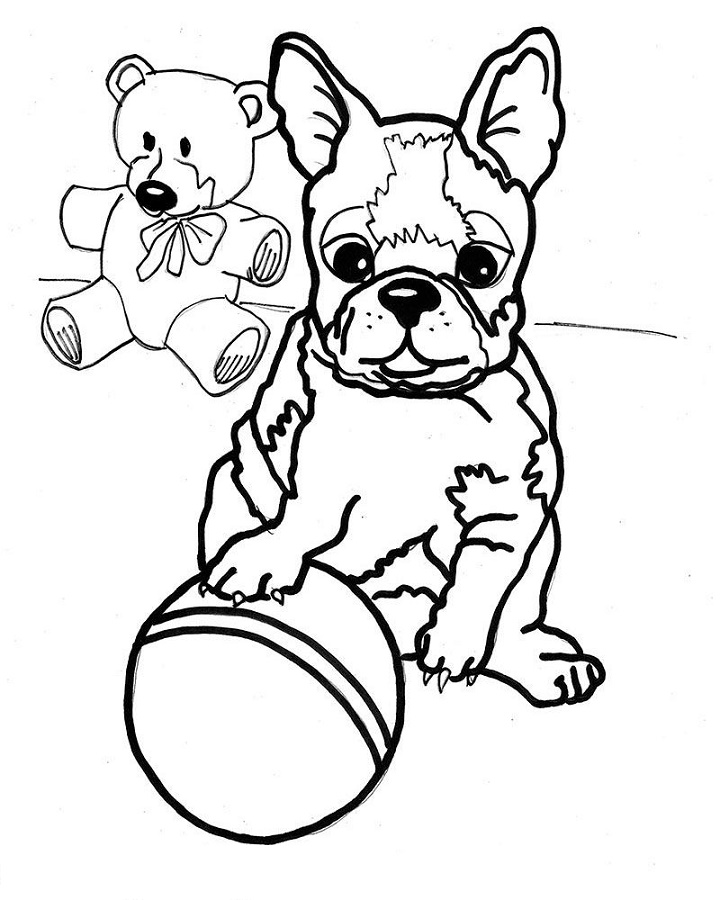 Boston Terrier Coloring Pages Printable Shelter Puppy Coloring Pages Cartoon Coloring Pages Coloring Pages