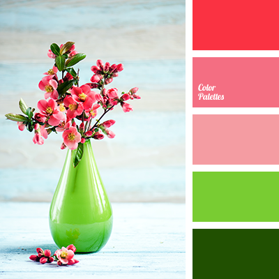 Color Palette #3276