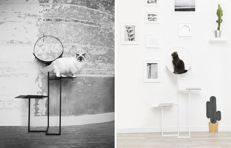Meyou Have Launched Their 2018 Cat Furniture Designs is part of Meyou Have Launched Their  Cat Furniture Designs - Modern pet furniture design company Meyou have launched 'The Hoop' and 'Vegas' as part of their 2018 collection