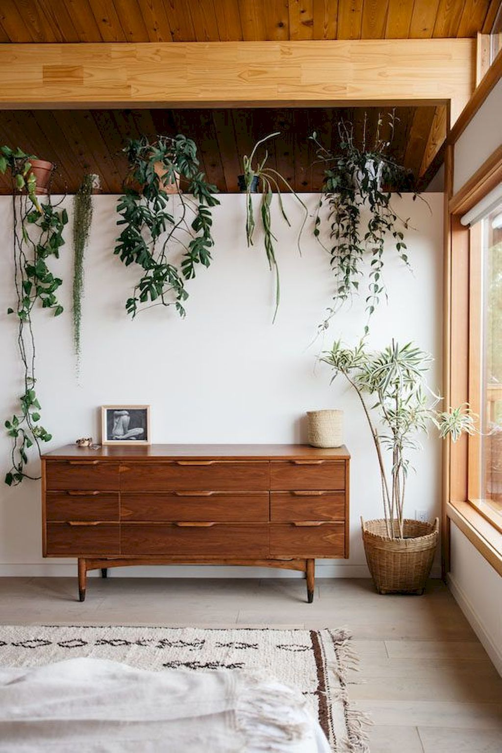 Amazing Life Plant Decorations Indoors Home Decor And