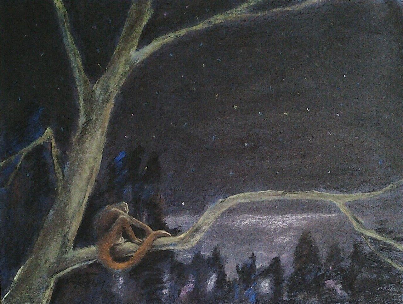 De Nacht