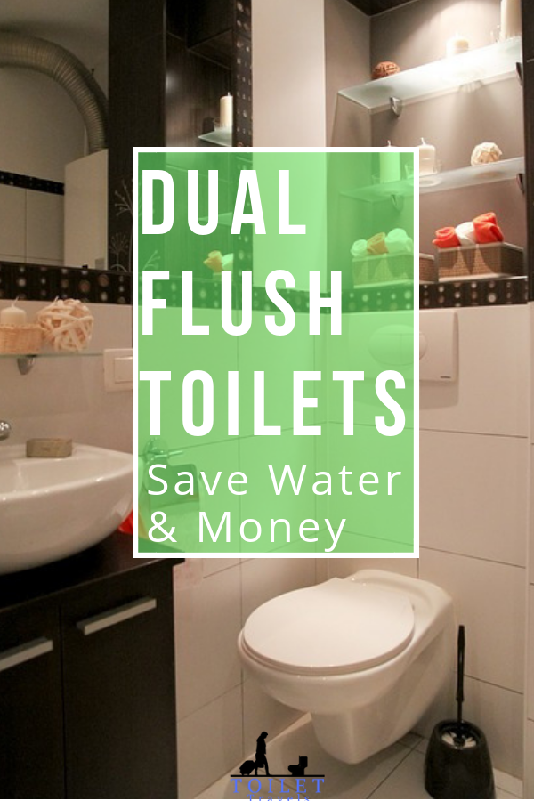 Best Dual Flush Toilet For 2020 6 Reviews Dual Flush Toilet Toilet New Toilet