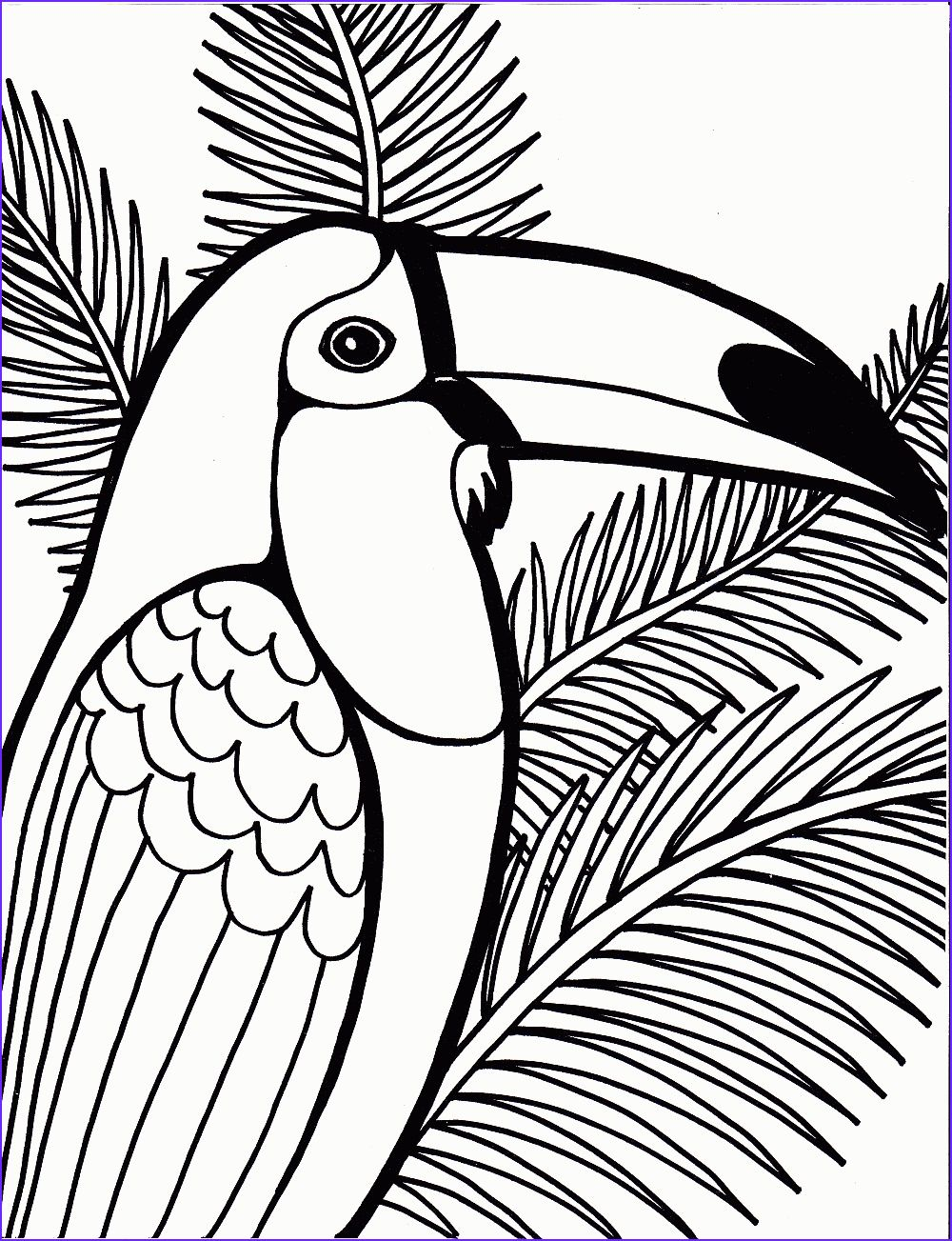 - 11 Beautiful Parrot Coloring Pages Image In 2020 Bird Coloring