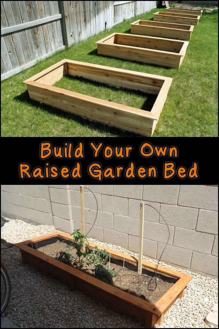 DIY Raised Garden Beds Building a raised garden, Garden