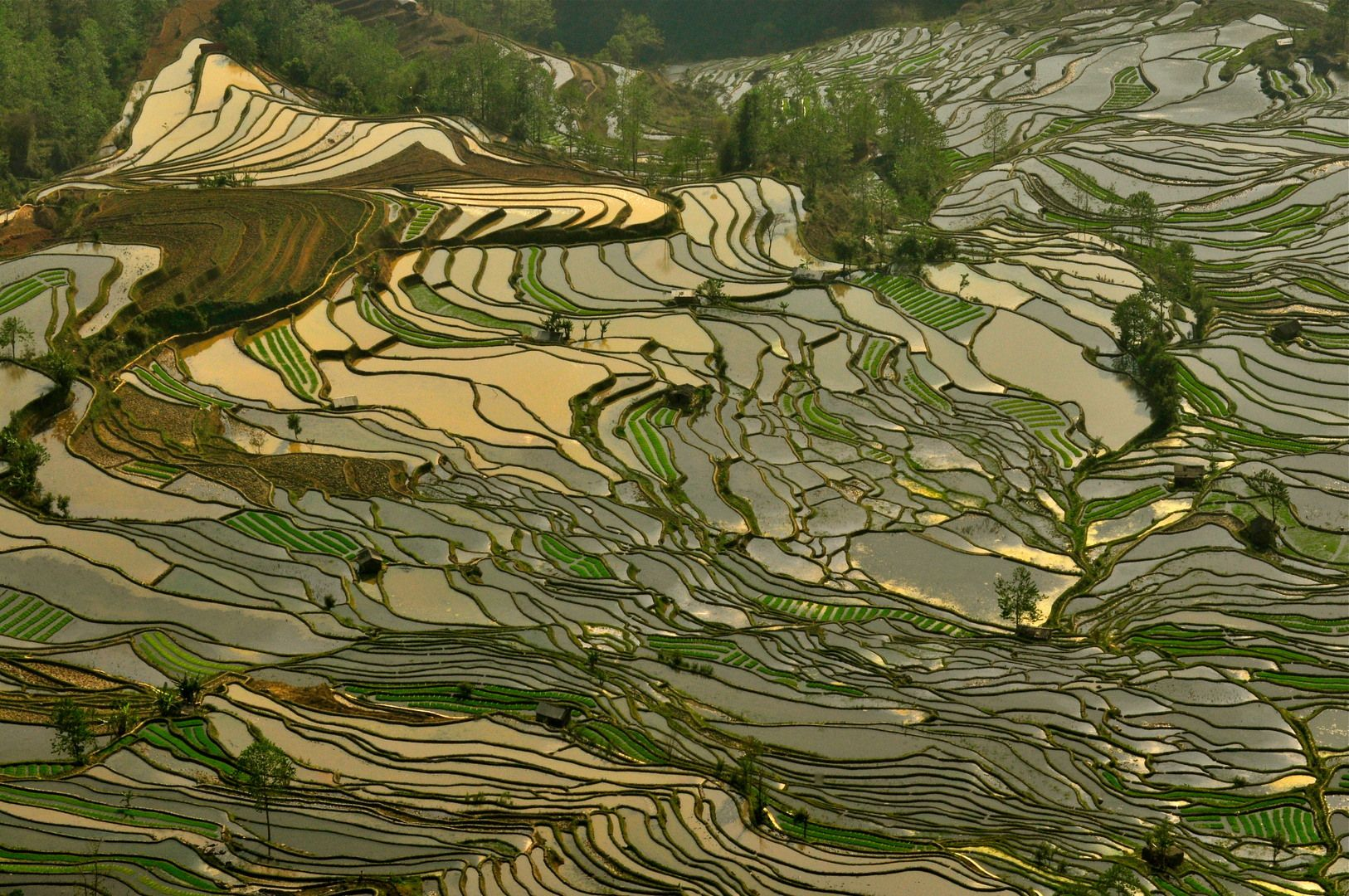 http://images.cdn.fotopedia.com/f68bcep7103n-pz7clBDXbA0-hd.jpg