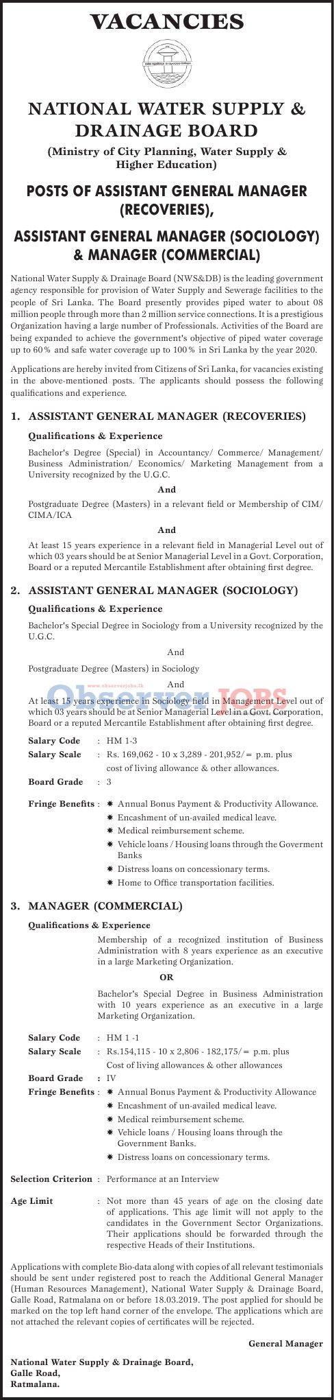 Assistant General Manager | Vacancy | Observer JOBS ™ | jobs