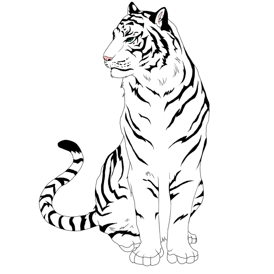 Coloring Pages Tiger New 50 Animals