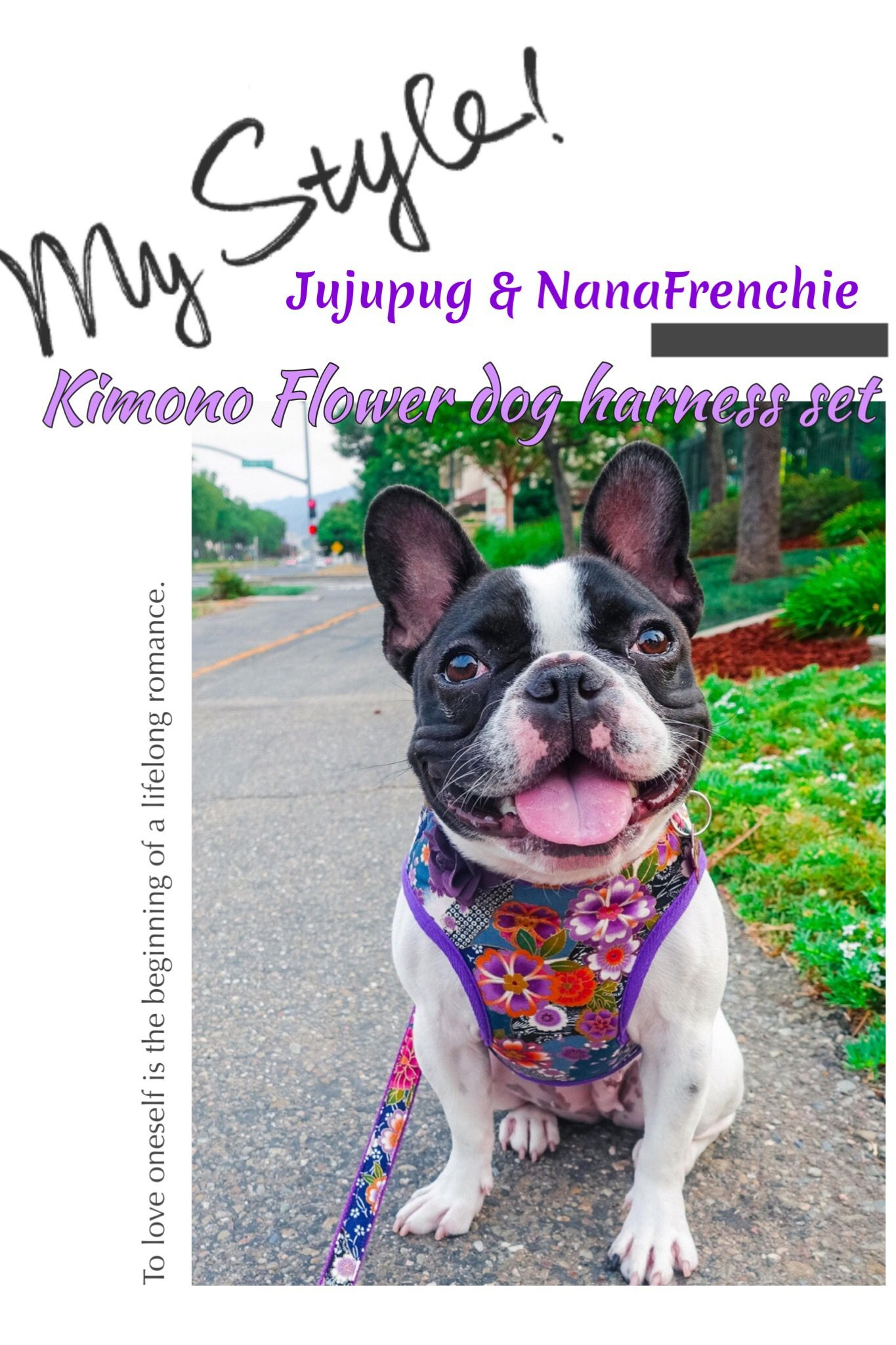 Girl Dog Harness Vest Small Dog Harness Custom French Bulldog