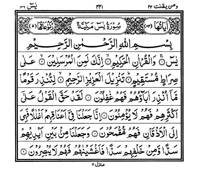 Read Surah Yasin | All Information | Ideas for the House | Patch