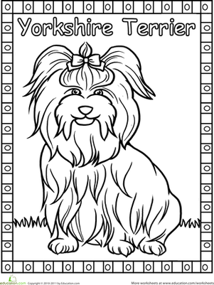 This Coloring Page Features A Yorkshire Terrier Or Quot Yorkie Quot Complete With A Bow In Her Long Silky Hair Cat Coloring Book Dog Coloring Page Yorkie