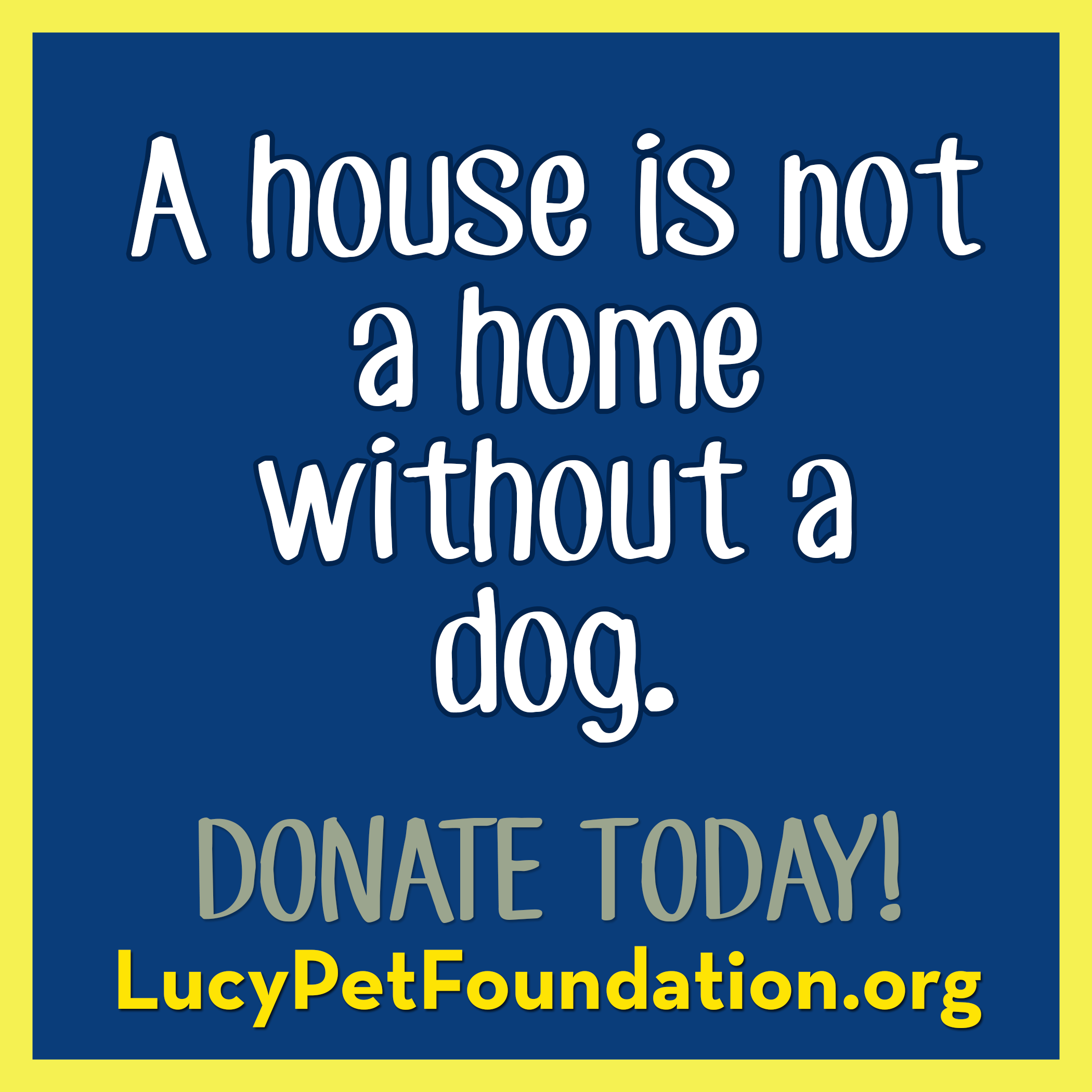 Lucy Pet Foundation Rescue, Dogs