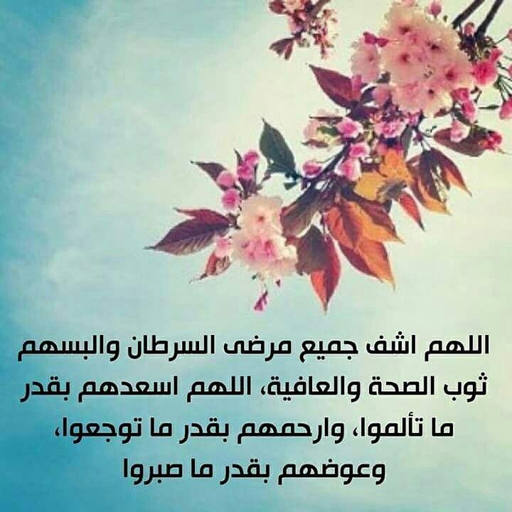 Pin By Manal On آمين يارب دعاء ادعيه لا اله إلا الله سبحان الله مسلمه سنيه سلفيه ولله الحمد Prayers Plants