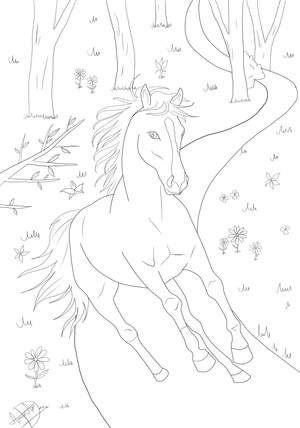 Beste Ausmalbilder Ausmalbilder Pferde Pferde Bilder Zum Ausmalen Ausmalbilder Pferde Zum Ausdrucken