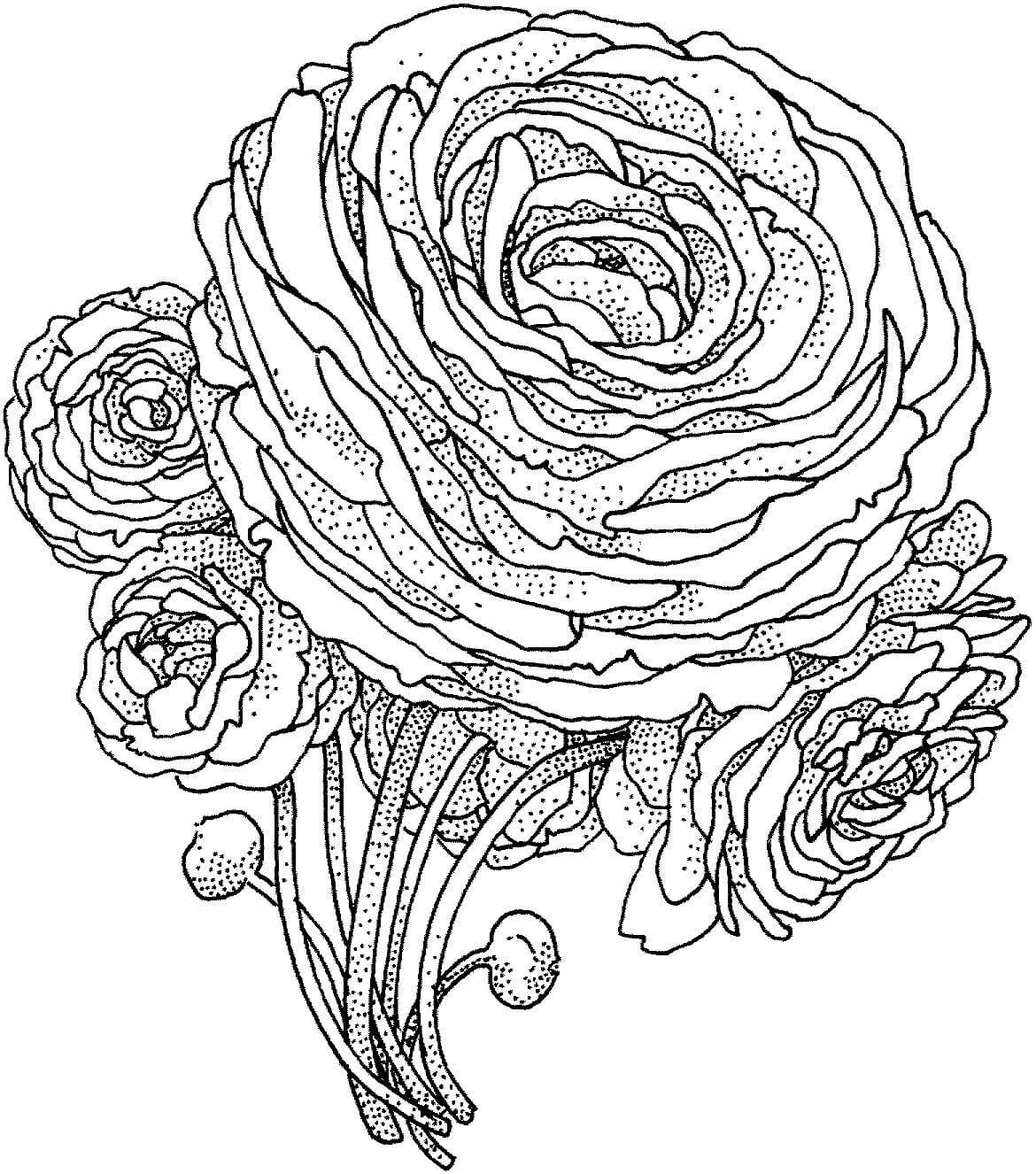 черно белые картинки для распечатки роза вовсе способны