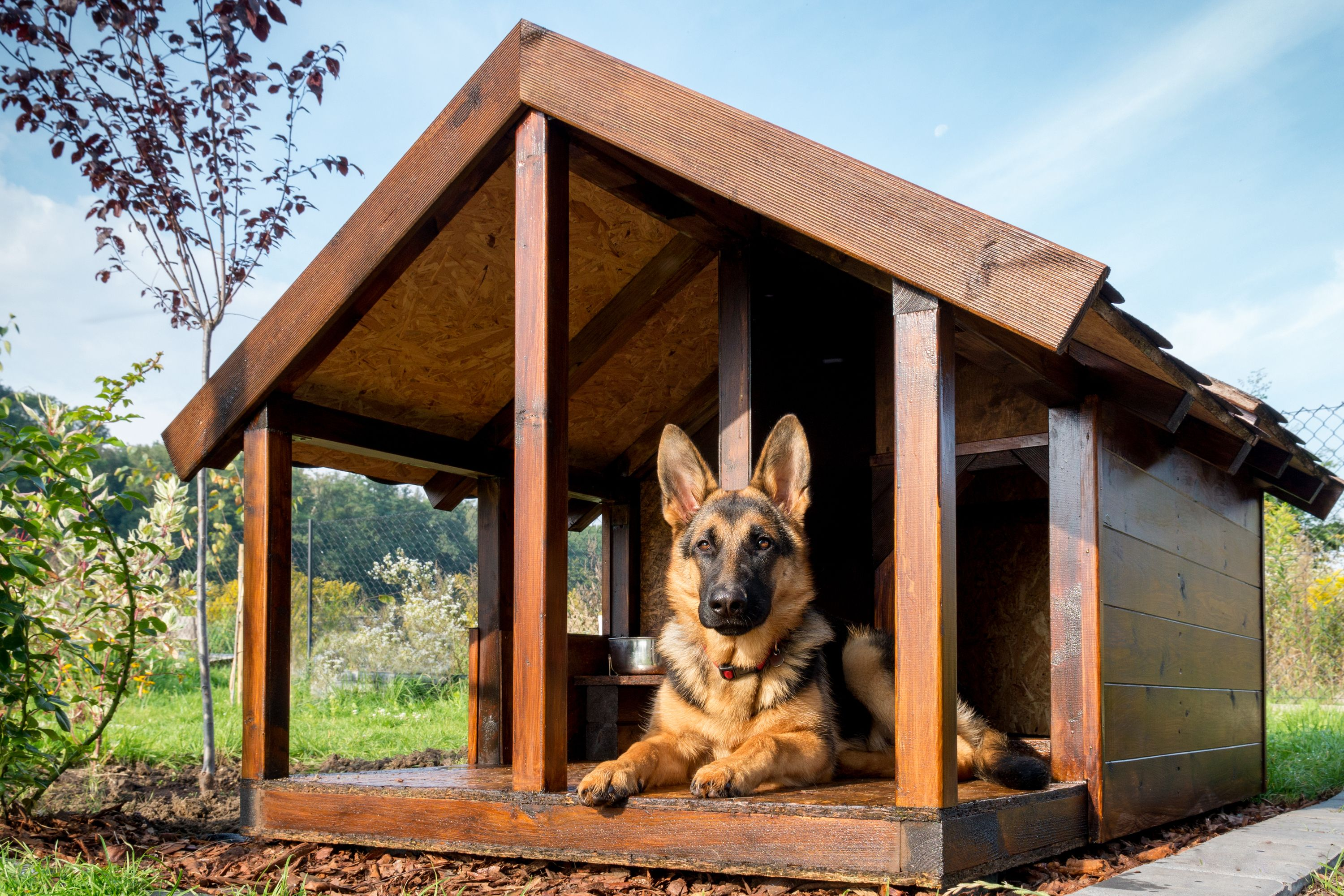 Diy dog house plans that are free and super cool cool