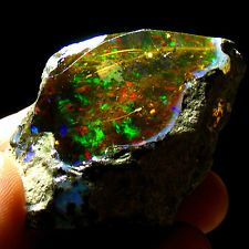 Black Opal, The--a Fable: a Fable