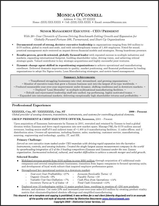 sample executive  resume for ceo  president