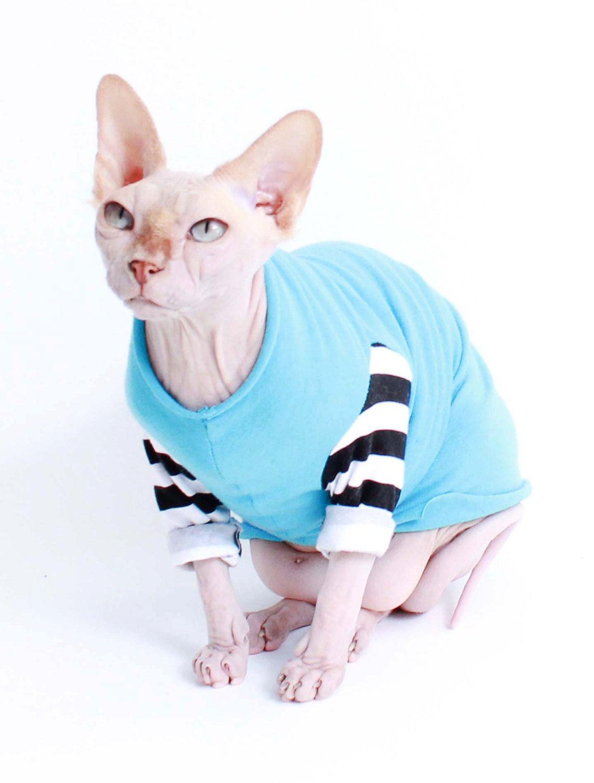Cat Clothes Sphynx Cat Clothes Cat Clothes Kitten Clothes