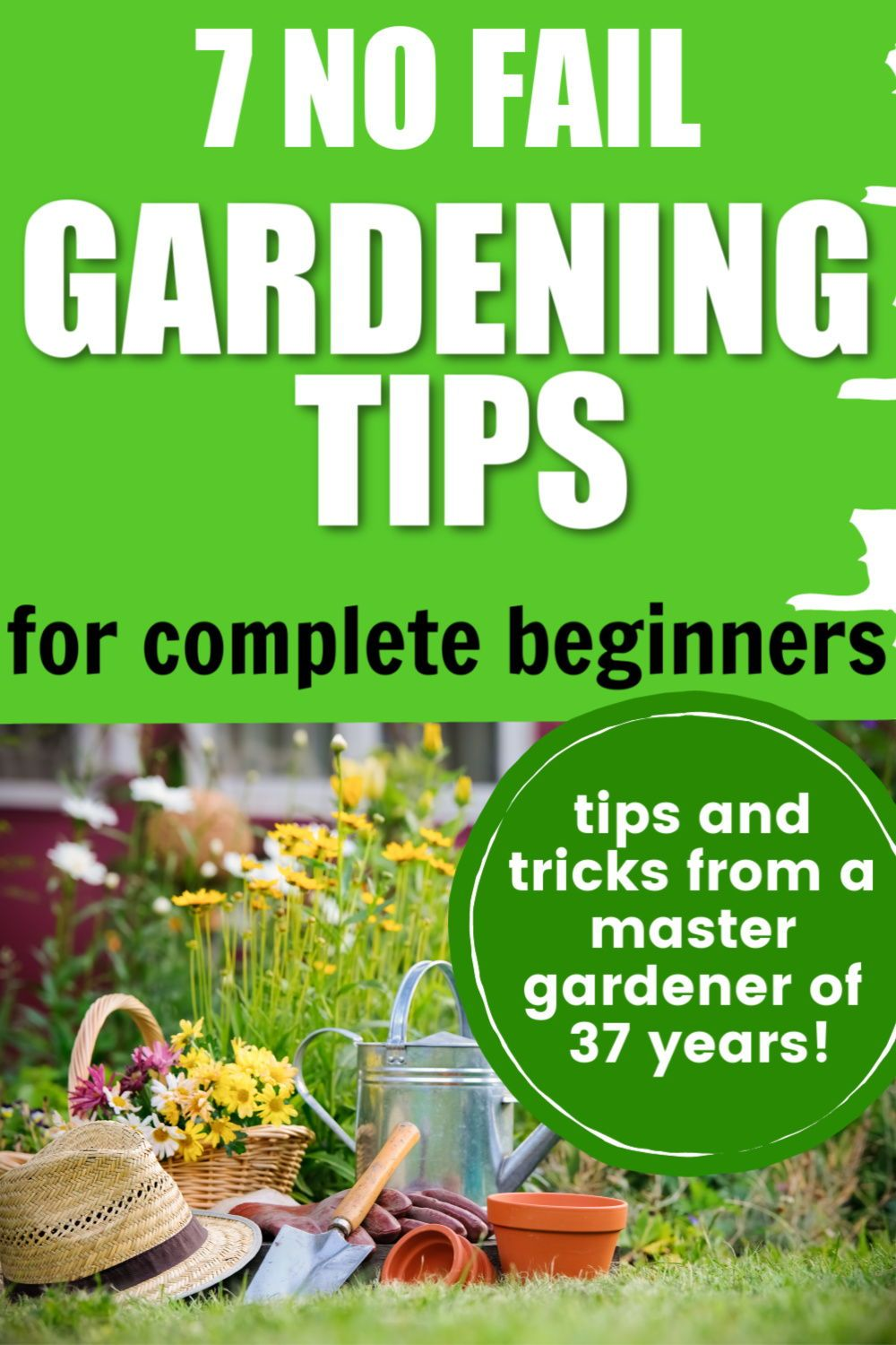 Gardening For Absolute Beginners (top tips for gardening success!) - 2020
