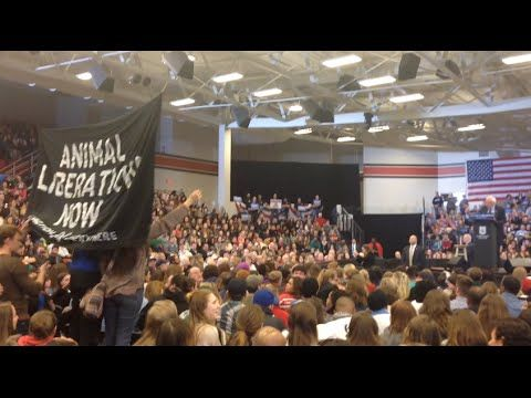 Animal Rights Activists Disrupt Bernie Sanders at Wisconsin Rally - YouTube