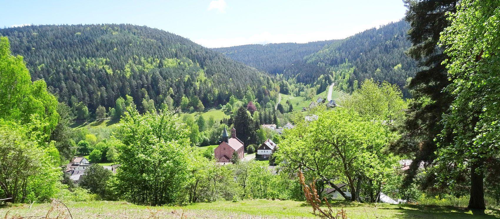 Lappachdal in Enzklösterle, BadenWürttemberg, duitsland