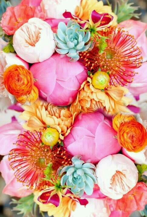 Gorgeous Flower !