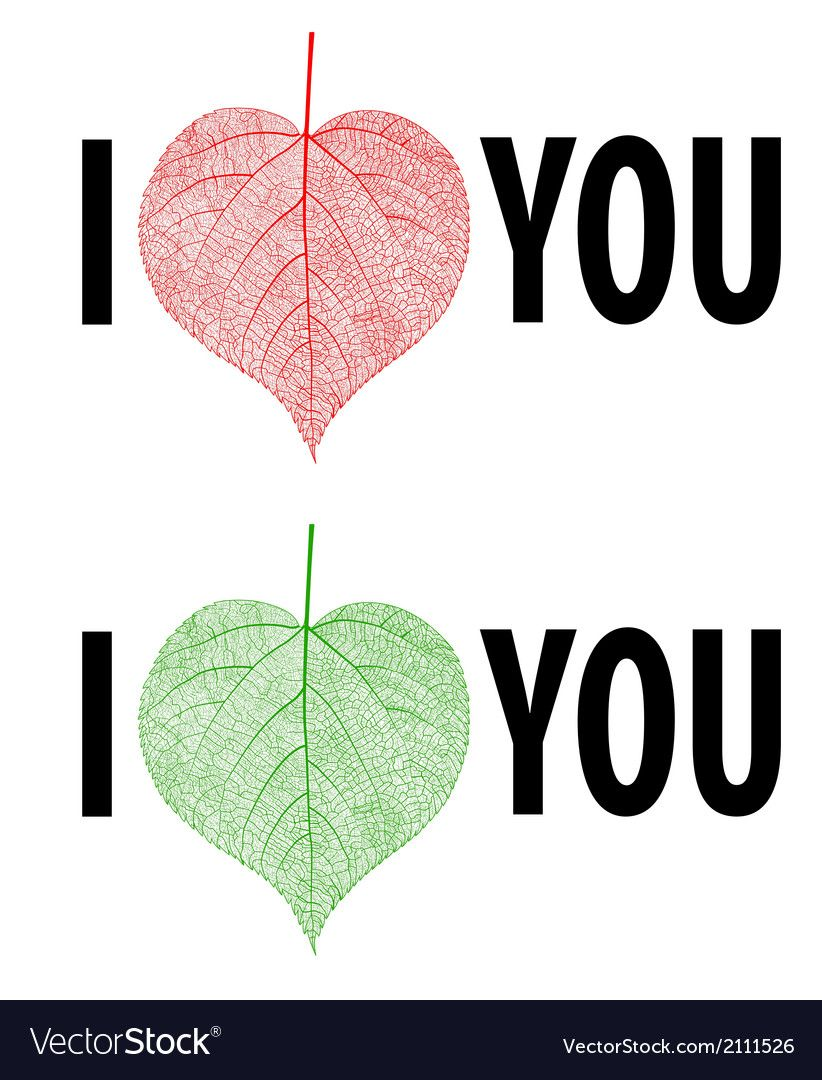 Download I Love You Lettering stylish text with leaf vector image ...