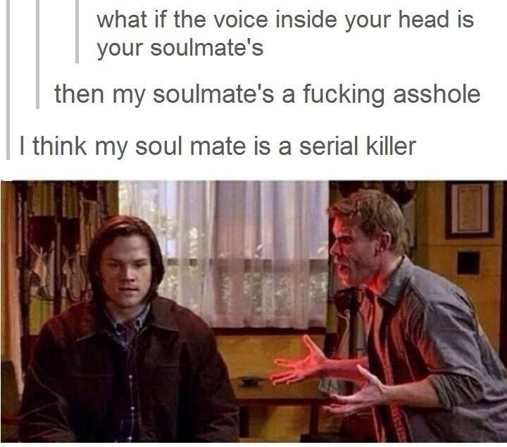I laughed waaaay harder than I probably should have. The Supernatural Fandom is genius.