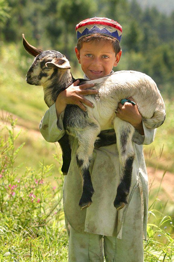 Afghan Shepherd: Little Shepherd Boy In Pakstan