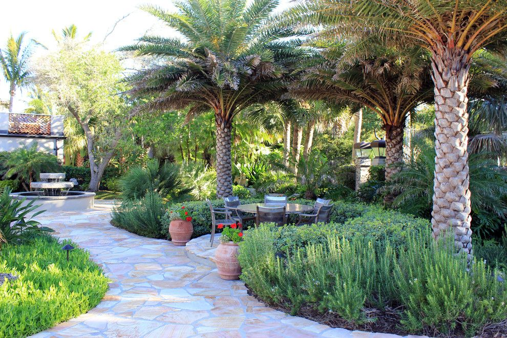 scroll down for 13 gardens with palm trees for tropical look